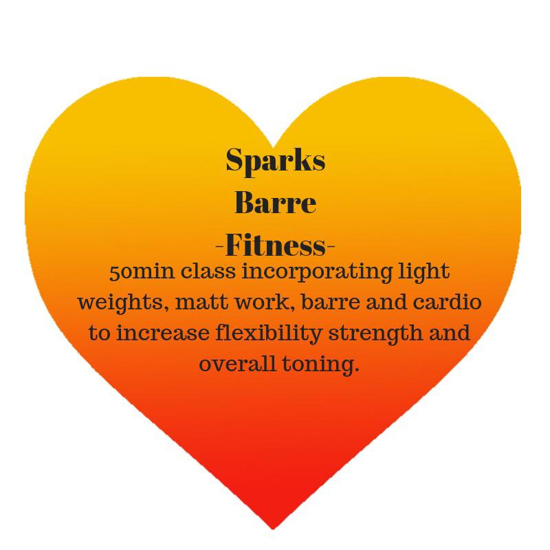 Adult Fitness Barre